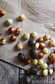 Djenkol beans (Archidendron Jiringa)