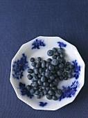 Heidelbeeren auf Teller vor blauem Hintergrund