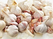 Many Fresh Garlic Bulbs