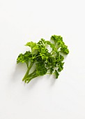 Fresh parsley seen from above