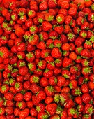Strawberries seen from above