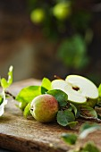 Frischer Granny Smith Apfel und Zierapfelzweig auf Holzbrett im Garten