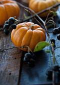Aronia berries and pumpkins
