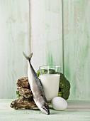 Stillleben mit Austern, Makrele, Milch, Ei und Brokkoli