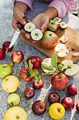 Verschiedene Apfelsorten, ganz und halbiert
