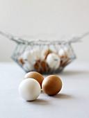 weiße und braune Eier