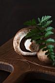 Braune Champignons auf Holzbrett mit Farnblatt
