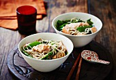 Soba noodle soup with salmon and mange tout (Asia)