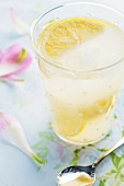 Ein Glas Limonade mit Zitronenschnitz