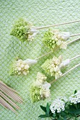 Romanesco cauliflower florets on skewers