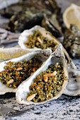 Grilled oysters with a herb crust and pine nuts