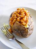 Folienkartoffel mit Baked Beans