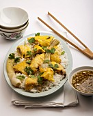Cantonese chicken with rice (China)