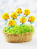 Easter chick cake pops in an Easter nest