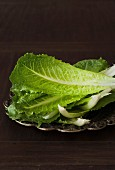 Romaine lettuce leaves on a metal plate