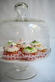 Spring cupcakes under a glass cloche
