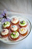 Delicate spring cupcakes