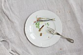 Sardines, oil and parsley on a white porcelain plate