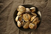 Littleneck clams in a bowl