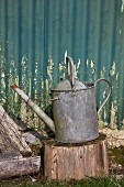 Old watering can on chopping block in garden