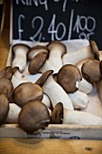 A crate of porcini mushrooms on a market stall in London