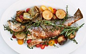 Grilled fish with herbs on a bed of Mediterranean vegetables