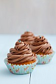 Chocolate Frosted Cupcakes