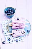 Blueberry yogurt ice cream sticks