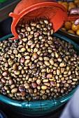 Frische Oliven auf einem Markt in Essaouira, Marokko