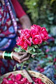 A women with red roses at a flower market in Mumbai, India