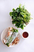 Rice paper rolls with various herbs and a spicy dip