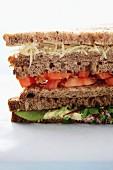 Large Sandwich; Close Up