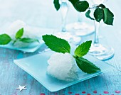 Refreshing peppermint sorbet with peppermint leaves