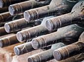 Weinflaschen lagern in einem Weinkeller in der Weinregion Kachetien, Georgien, Kaukasus