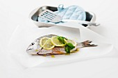 Seabream with lemon slices and basil