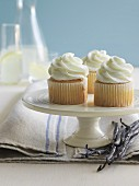Vanilla cupcakes on a white cake stand