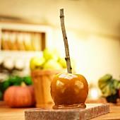 Karamellapfel mit Stick vor Äpfeln und Kürbissen in der Küche