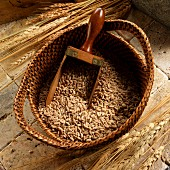 Farro (Italian wheat) in basket with a scoop
