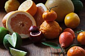 An arrangement of citrus fruits featuring kumquats, blood oranges, mandarins, lemons, oranges and grapefruits