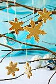 Cinnamon snowflakes biscuits on a twig
