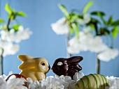 White and dark chocolate bunnies between spring flowers
