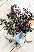 Elderberries on a chopping board with a funnel