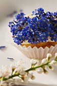 Cupcake mit Frühlingsblumen