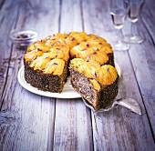 Polnischer Mohnkuchen mit Aprikosen und Kornblumen