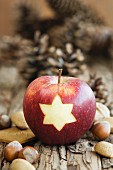 An apple, nuts and pine cones for as Christmas decorations
