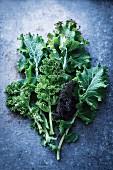 An arrangement of kale