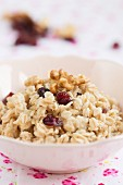 A bowl of oats with nuts and cranberries