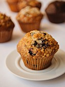 A blueberry muffin with assorted muffins in the background