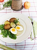 New potatoes with green sauce and egg