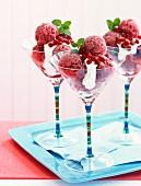Pomegranate sorbet in a martini glass